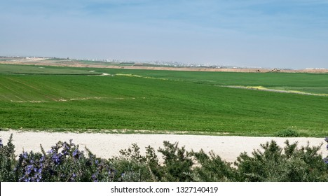 lush agricultral fields in the western negev in israel with gaza city and a partly cloudy sky in the background