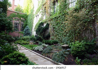 A lush boston garden in the fancy part of town, full and eclectic garden with path way leading to house