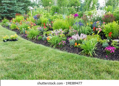 Lush flowerbed with colorful flowering celosia and ornamental plants with new celosia plants standing ready on the lawn for transplanting