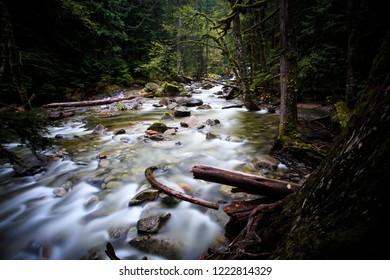 Lush Forest Surrounds Deception Creek On Stevens Pass Washington