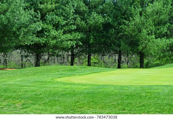 Lush green fairway on a golf course