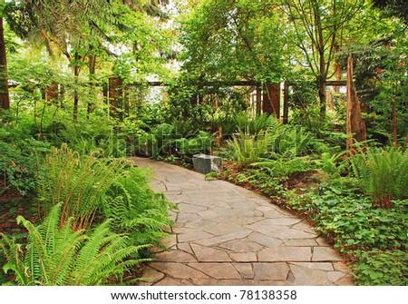 Lush Green Fern Garden