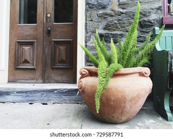 A lush green fern in a giant terracotta planter sits on the front patio of an old home.
