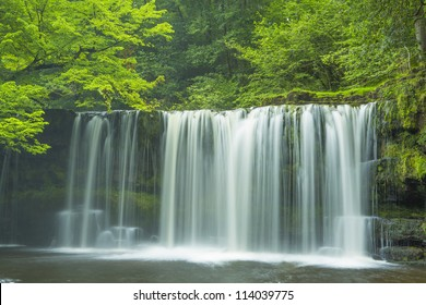 lush green forest with waterfall