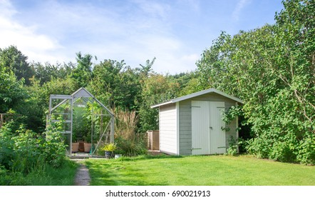 Lush green garden with big old plum tree and greenhouse and shed