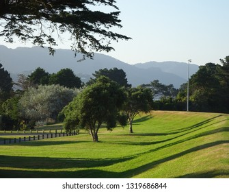 Lush green glass and morning shadows at peaceful Sladden Park, Lower Hutt, New Zealand