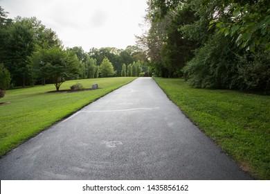 Lush Green Grass Landscaped Mowed Lawn Asphalt Driveway Trees Sky Pathway Summer in Virginia