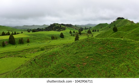 Lush green hills and valleys along Forgotten World Highway in north island, New Zealand