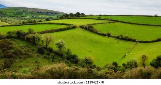 lush green hills of West Ireland, Ring of Kerry route
