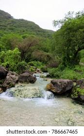 Lush green mountain landscape and waterfall, water stream in Ayn Khor tourist resort, Salalah, Oman