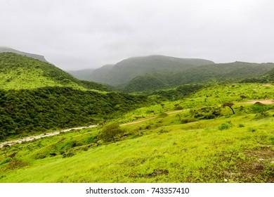 Lush green mountains at Ayn Khor, Salalah, Oman
