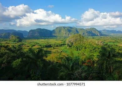 Lush green nature of the Valle de Vinales in Pinar del Rio Province in Western Cuba in evening light on 20 December 2013.
