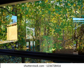 Lush green park garden view via a glass window home backyard background image
