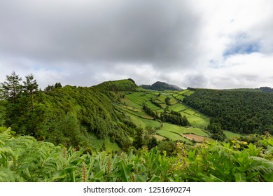Lush green plants and pastures in Sete Cidades in Sao Miguel, Azores.
