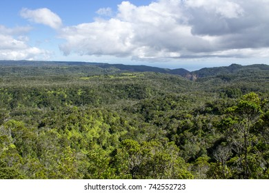 Lush, green tropical rainforest in the highlands viewed from Puu O Kila Lookout in the Kokee  State Park on Kauai, Hawaii