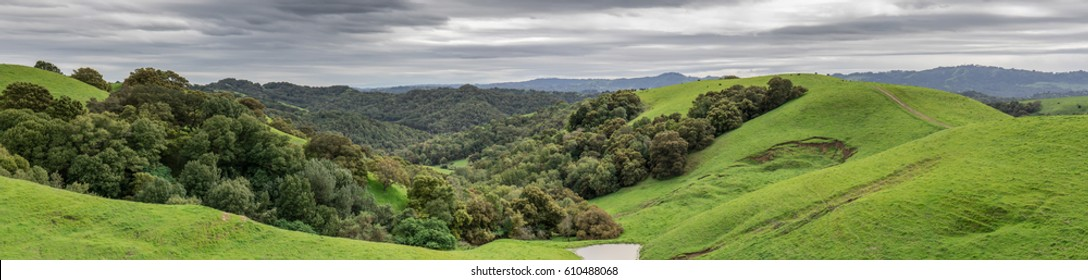 Lush green winter panorama at Briones Regional Park. Martinez, Contra Costa County, California, USA.