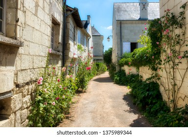 Lush Lane in the Village of Candes-Saint-Martin in the Loire Valley, France