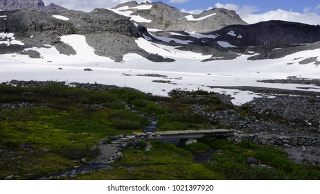 Lush meadow with bridge over stream in foreground, snow covered mountains in background.