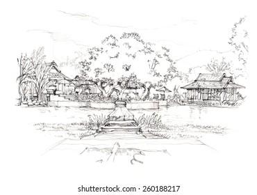 lush natural tropical resort garden drawing