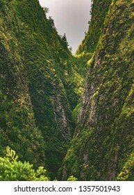 Lush rainforest in Iao Valley State Park, located outside of Kahului and Wailuku in the West Maui Forest Reserve on the island of Maui, Hawaii, United States.