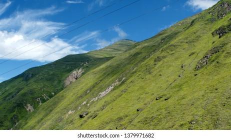 Lush slope beside the Devil's Nose Railroad near Alausi, Ecuador
