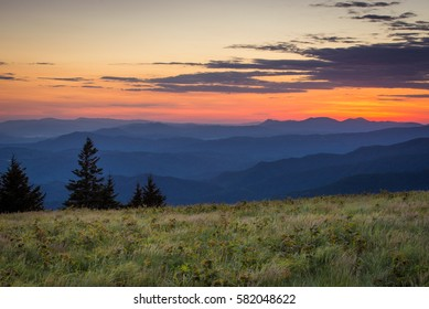 The lush summer landscape at Roan Mountain as I hike along the Appalachian trail at sunrise on the border of North Carolina and Tennessee.