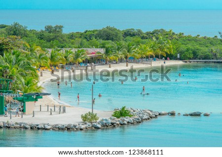 Lush, tropical, foliage on beach in Roatan Island , Honduras