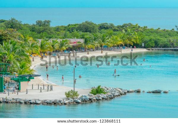 Lush, tropical, foliage on beach in Roatan Island , Honduras