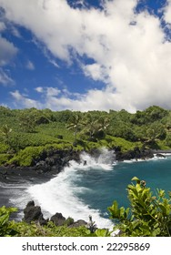 Lush tropical foliage surround a dramatic deserted black sand beach with wild waves
