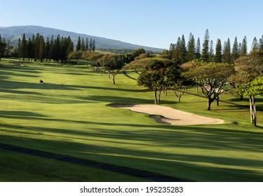 lush tropical golf course in Maui, Hawaii