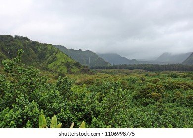 A lush tropical rainforest covering Wailua Canyon with five waterfalls flowing down the cliffsides, in Kula, Maui, USA