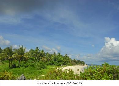 Lush vegetation bording a white sand beach