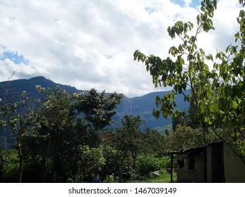 Lush vegetation of the Peruvian Amazon rainforest. Gocta waterfall in the background.
