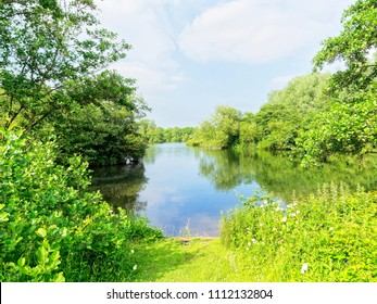 lush vegetation surrounds a small, shallow, lake. Trees, shrubs and bushes are reflected in the lakes surface.