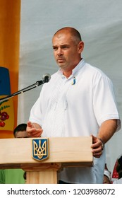 LUTSK, Volyn / UKRAINE - 24 August 2012: People's deputy of Ukraine Ihor Palytsia delivers a speech during the celebration of Independence Day