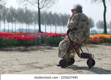 LUTTELGEEST, NETHERLANDS - April 21 2019: Older woman with sunglasses sits on her walker and enjoys a tulip field in the sun