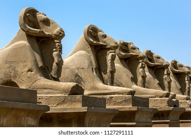 LUXOR, EGYPT - MARCH 16, 2010 : A row of stone carved ram statues at the entrance to the Karnak Temple in Luxor, Egypt. The Karnak Temple is also known as the Temple of Amun
