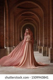 A luxurious beauty lady in a long pink dress in a road coat hood style is walking along the old castle corridor. The elf queen. train is flying, waving. Art attractive fantasy woman model posing.