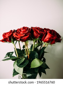 luxurious bouquet of large red roses close-up on a light background in the dark. low key photography, noir