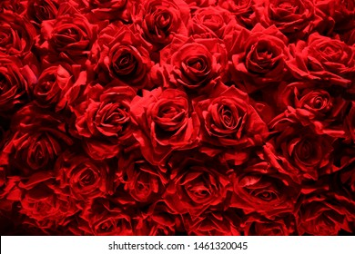 Luxurious bouquet of red roses. Close-up photo of fresh flowers. Floral background composition on the subject of St. Valentine's day, wedding, holiday or festive event.