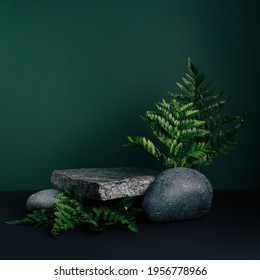 Luxurious empty product marble stone podium and forest green leaves on dark background. Concept scene stage for promotion, sale, presentation or cosmetic. Black minimal mock up template. - Shutterstock ID 1956778966