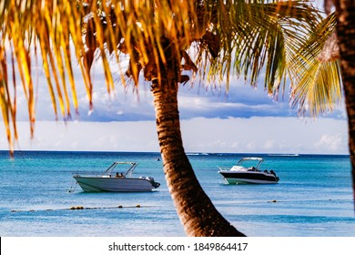 Luxurious yachts in the sea off the coast of the island of Mauritius lie under palm trees in the evening sun