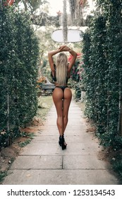 Luxury ass. Huge Butt. Sexual forms. Big ass. Sports figure. Erotica. Round buttocks. Blonde woman in black lace lingerie. Back View