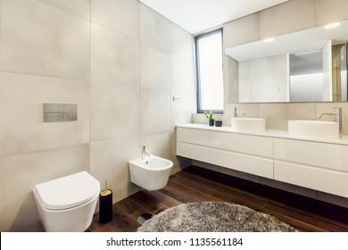 luxury bathroom interior with mirror, grey carpet and bidet