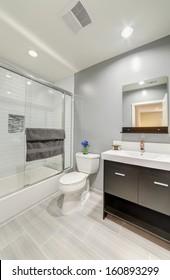Luxury bathroom toilet in a luxury house.