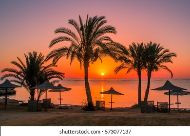 luxury beach Egypt in Red Sea