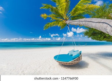 Luxury beach. Luxury travel background. Summer vacation or holiday concept on tropical beach, palm tree and an amazing swing over white sand with sea view.