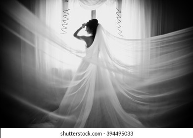 Luxury beautiful bride near the window b&w