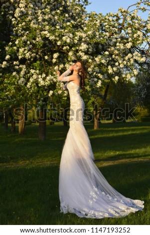 Luxury Bride Diamond Earrings Wedding Dress Stock Photo Edit Now