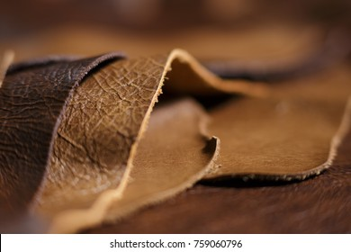 Luxury brown leather samples close-up. Can be used as background